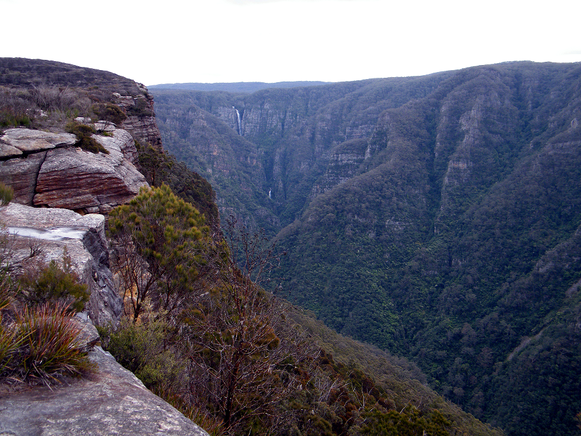 The wilds of Kanangra Gorge in the Blue Mountains